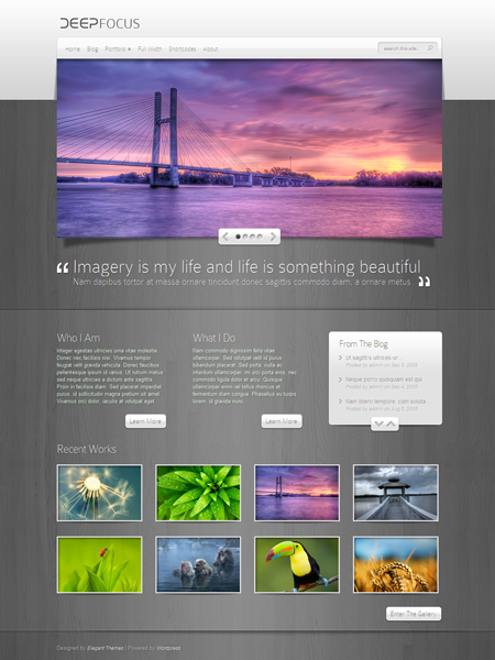DeepFocus WordPress Responsive Portfolio Theme for Photography or Web Design