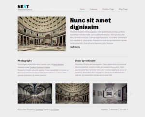 Next Professional WordPress Theme for Business Portfolio or Blogs