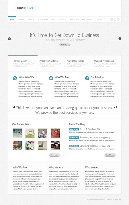 Trim WordPress Theme for Professional Services with Responsive Layout