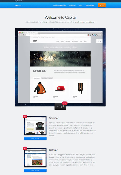 Capital WordPress WooCommerce Theme