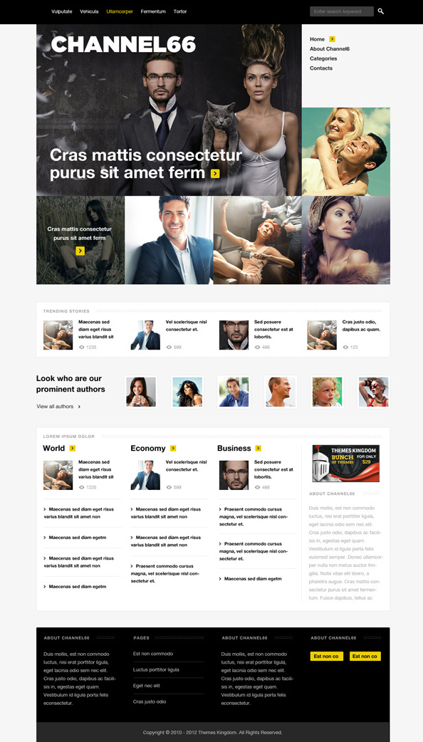 Channel66 Responsive WordPress Theme