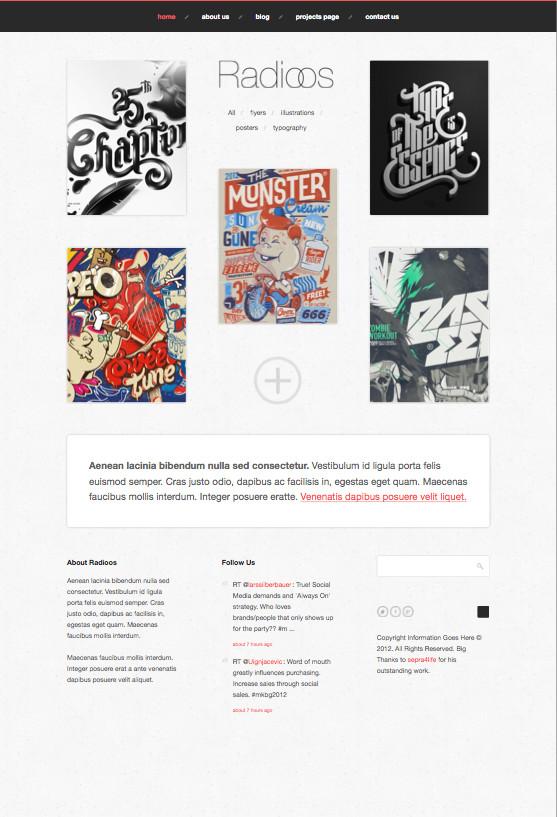 Radioos Responsive WordPress Portfolio Theme