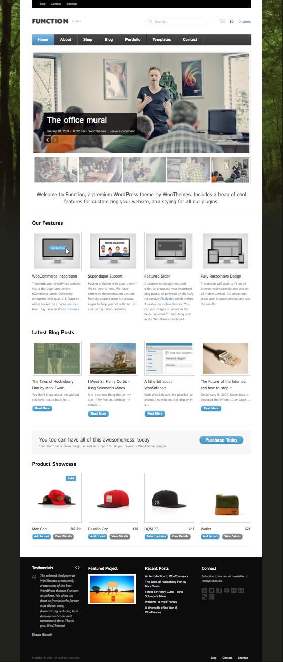 Function WordPress Theme