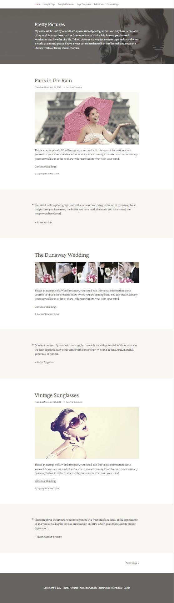 Pretty Pictures WordPress Photographic Theme