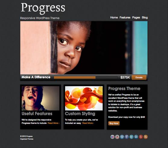 Progress WordPress Non-profit Theme