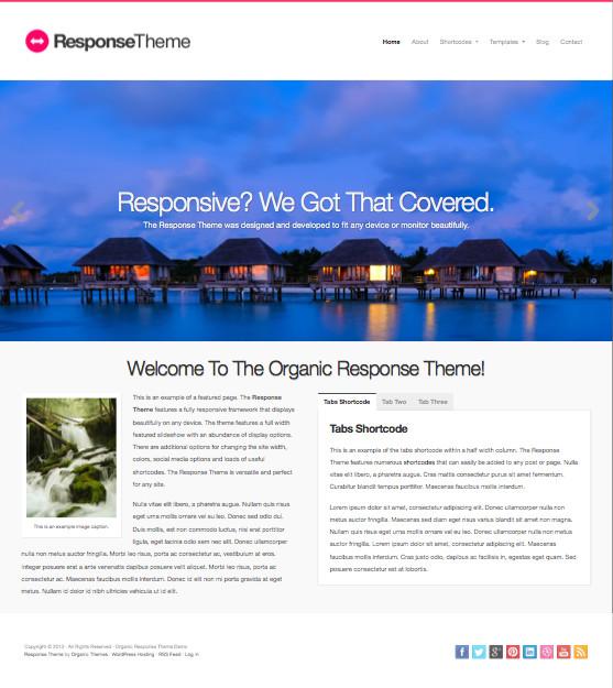Response WordPress Retina Display Theme