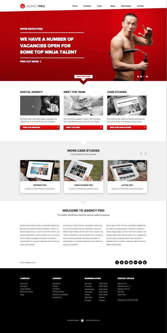 Agency Pro WordPress Corporate Theme