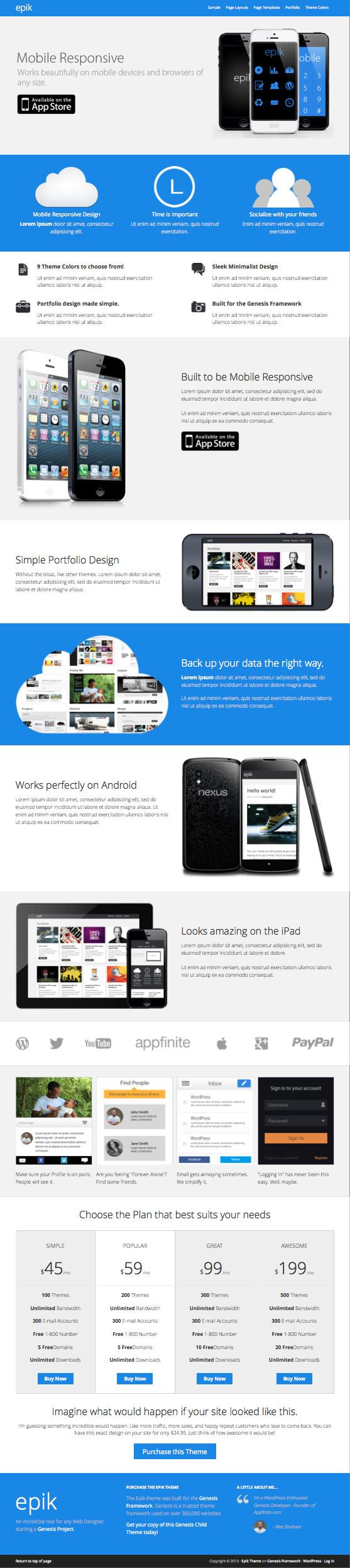 Epik 1.0 WordPress Web Designer Theme