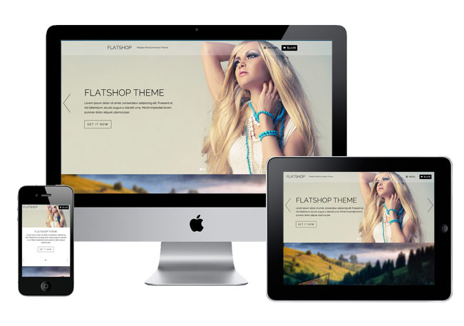 FlatShop Responsive WordPress eCommerce Theme