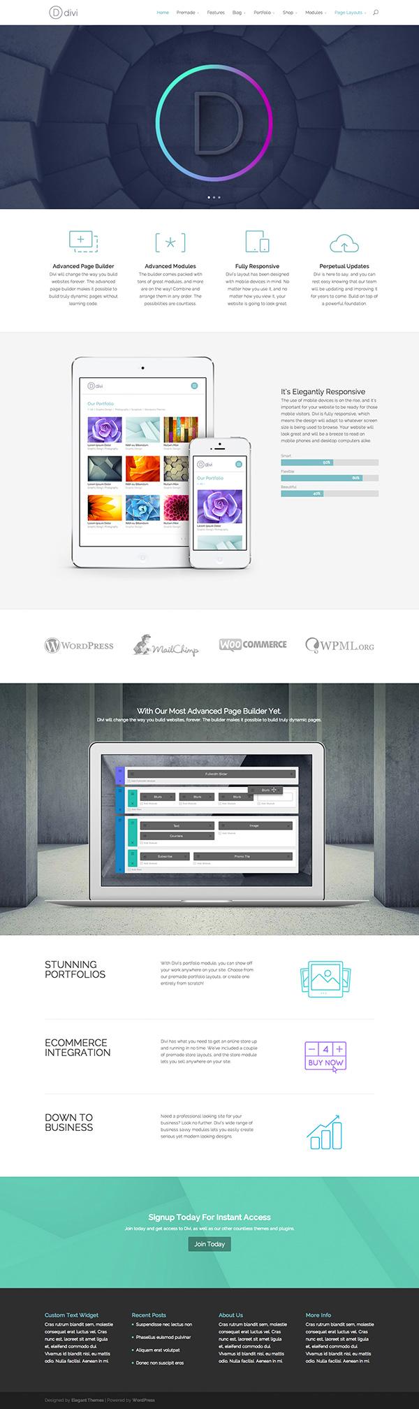 Divi WordPress Theme with Custom Builder