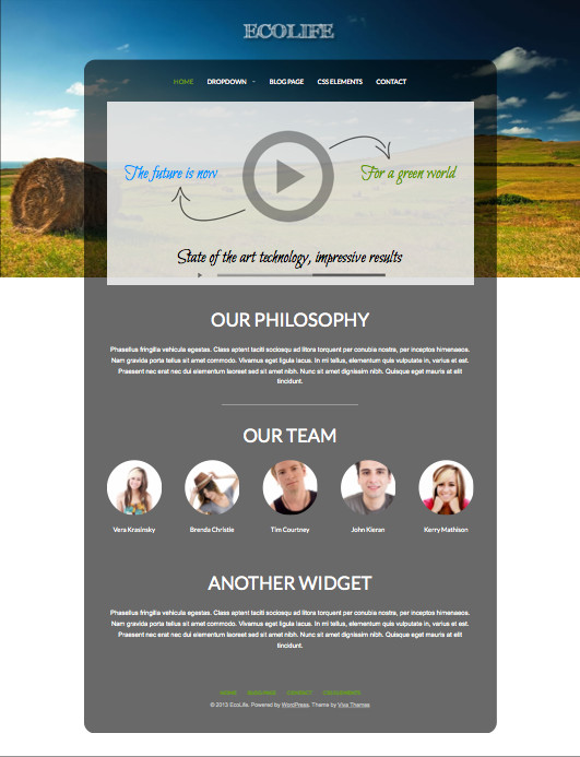Ecolife WordPress Non-Profit Business Theme