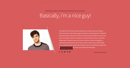 Freelancer WordPress One Page Personal Portfolio Theme