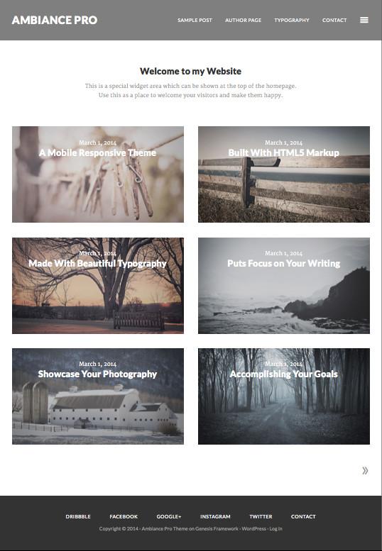 Ambiance Pro WordPress Showcase Portfolio Works Theme
