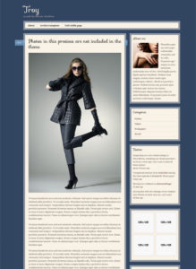 Troy – Tumblr Like Theme & Custom Post Types