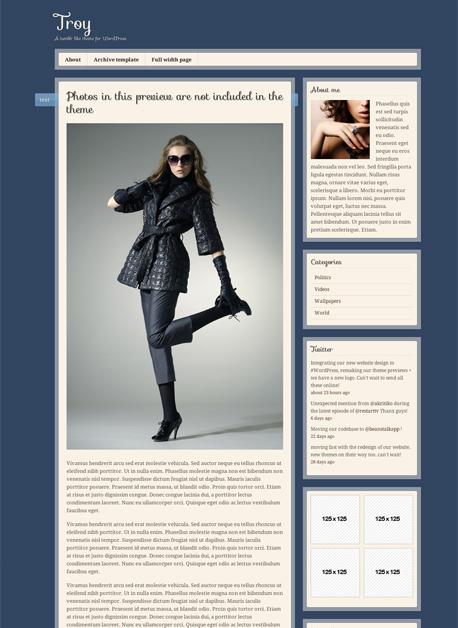 Troy – Tumblr Like Theme & Custom Post Types