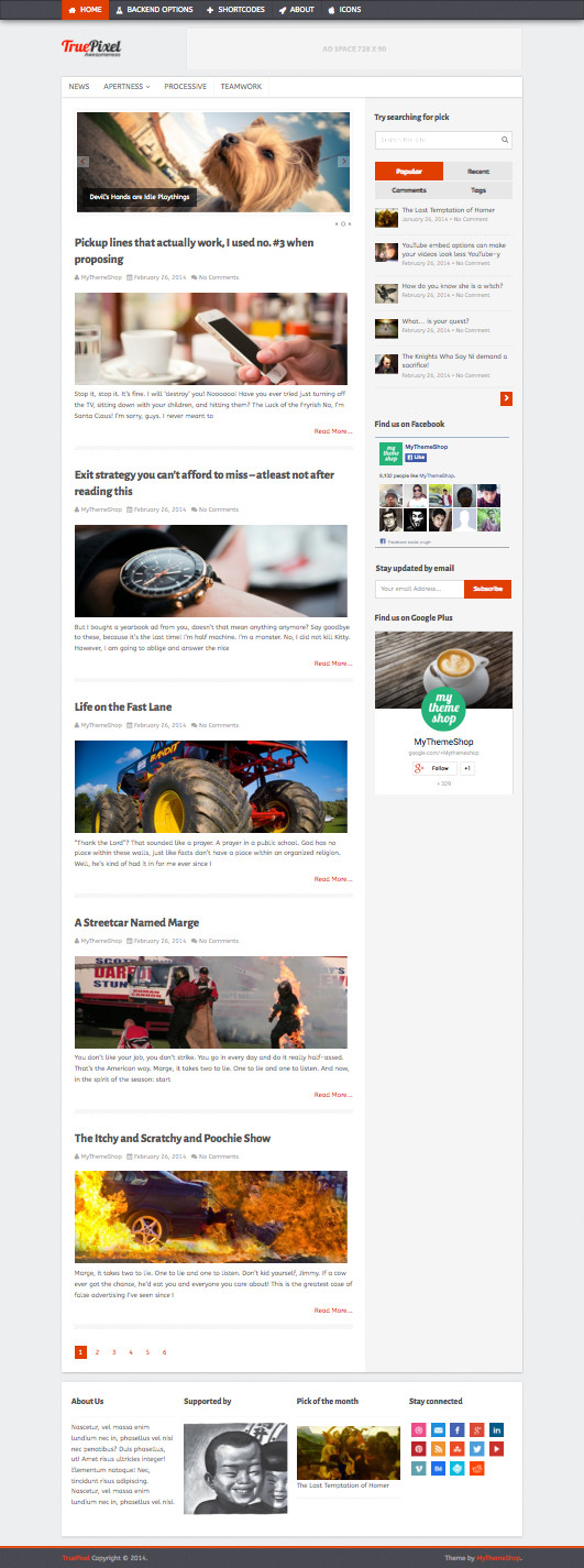 TruePixel WordPress Magazine Style Theme
