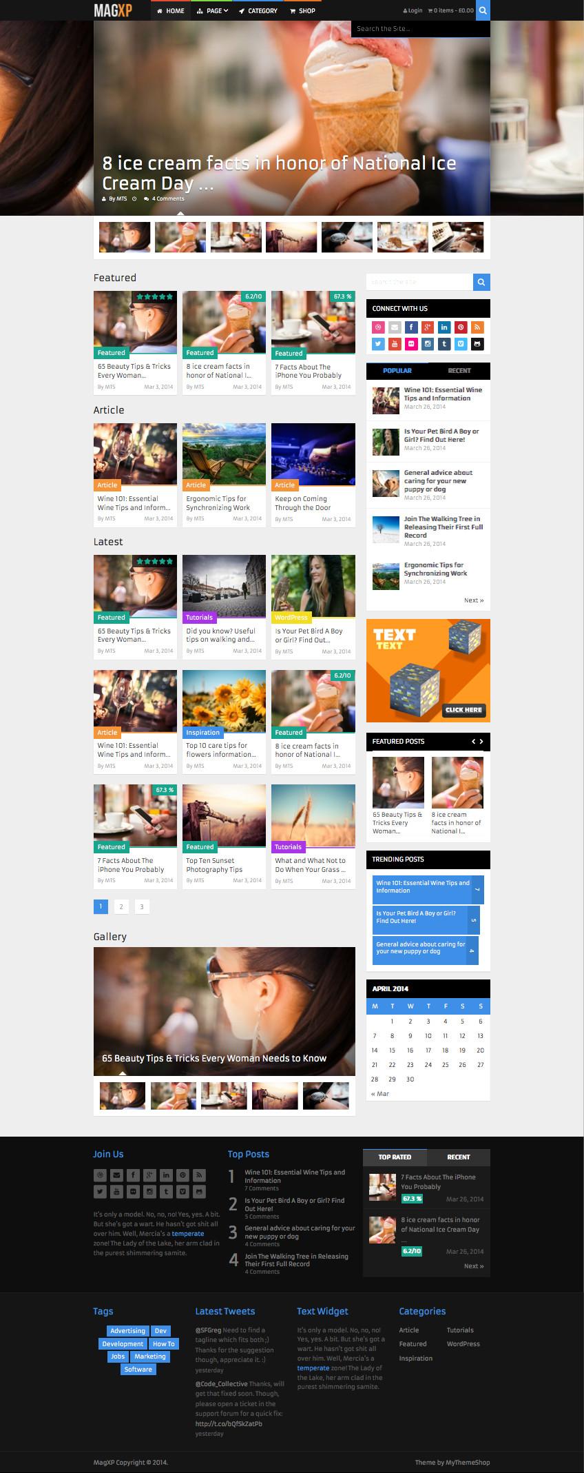 MagXP WP Technology News Theme