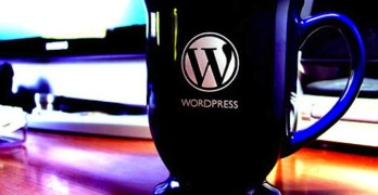 WordPress For Business Start-Up