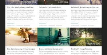 Adroit WordPress Magazine Blogging Theme