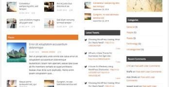 Forthcoming WordPress Multi-Topic Blogs Theme