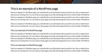 Company WordPress Organization Theme