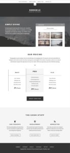Remobile Pro WordPress Beautiful Typography Business Theme