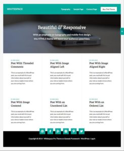 Whitespace Pro – Awesome WordPress Blogging Theme