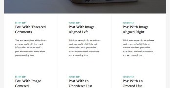 Whitespace Pro WordPress Blogging Theme