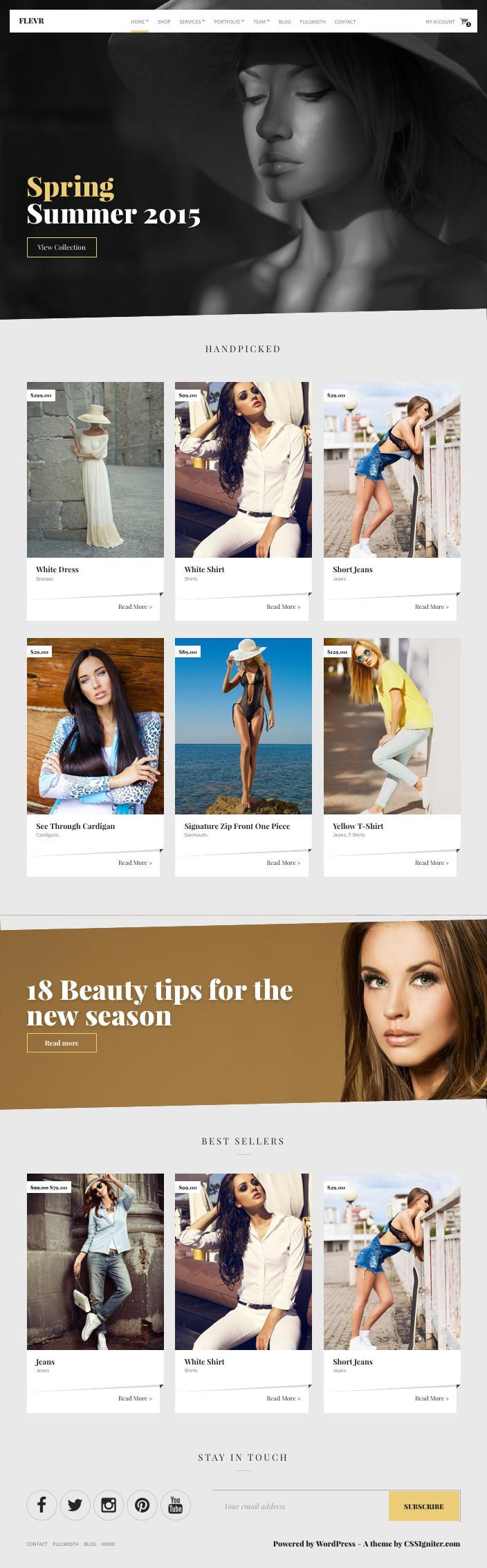Flevr WordPress Business or eCommerce Theme