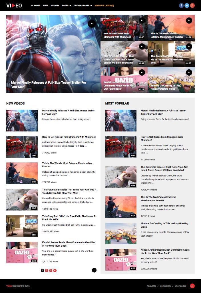 Video WordPress Media Content Marketing Theme