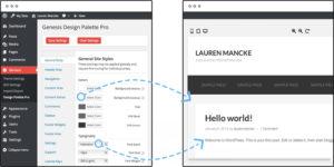 Design Palette Pro – Genesis Framework Customization Plugin
