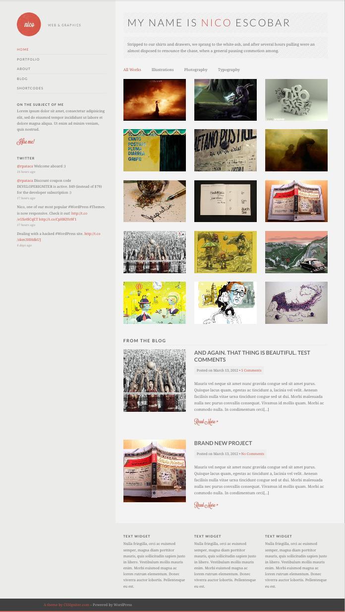 Responsive Nico WordPress Graphic Designer Portfolio Theme