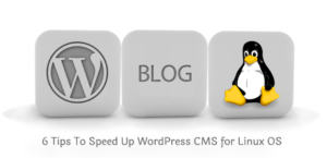 6 Tips To Speed Up WordPress CMS for Linux OS
