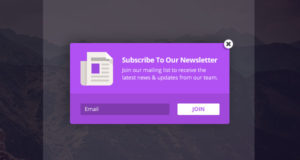 Bloom – #1 Email Subscription Or Newsletter Plugin for WordPress