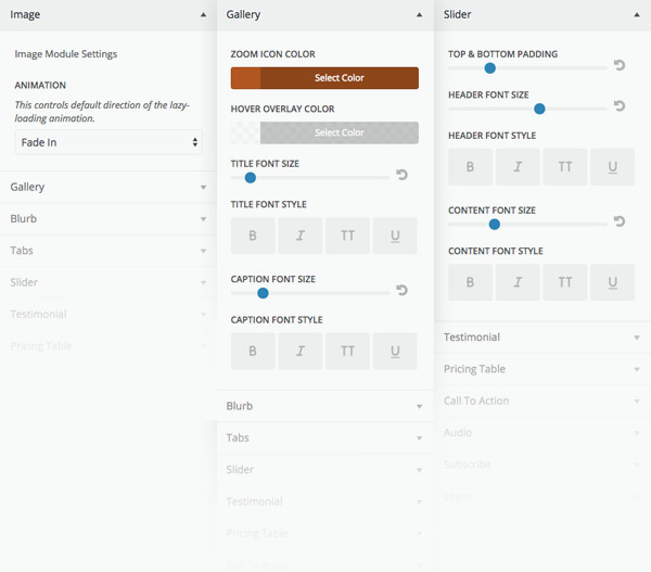 Divi Module Customizer Theme