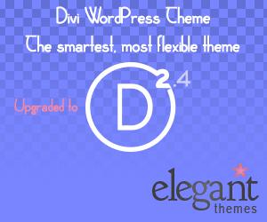 Divi 2.4 WordPress Theme from ElegantThemes club