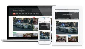 Domino Magazine WordPress Dynamic Homepage Builder Theme