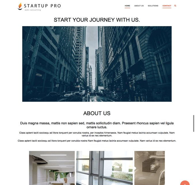 Startup Company Pro WordPress One Page Design Theme