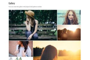 Silvia WordPress Free Grid Layout Photography Theme