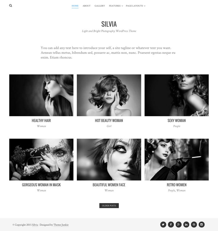 Silvia WordPress Free Grid Photography Theme