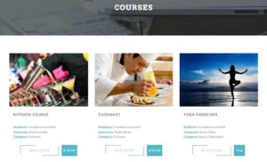 LevelUp WordPress Learning Management System (LMS) Theme