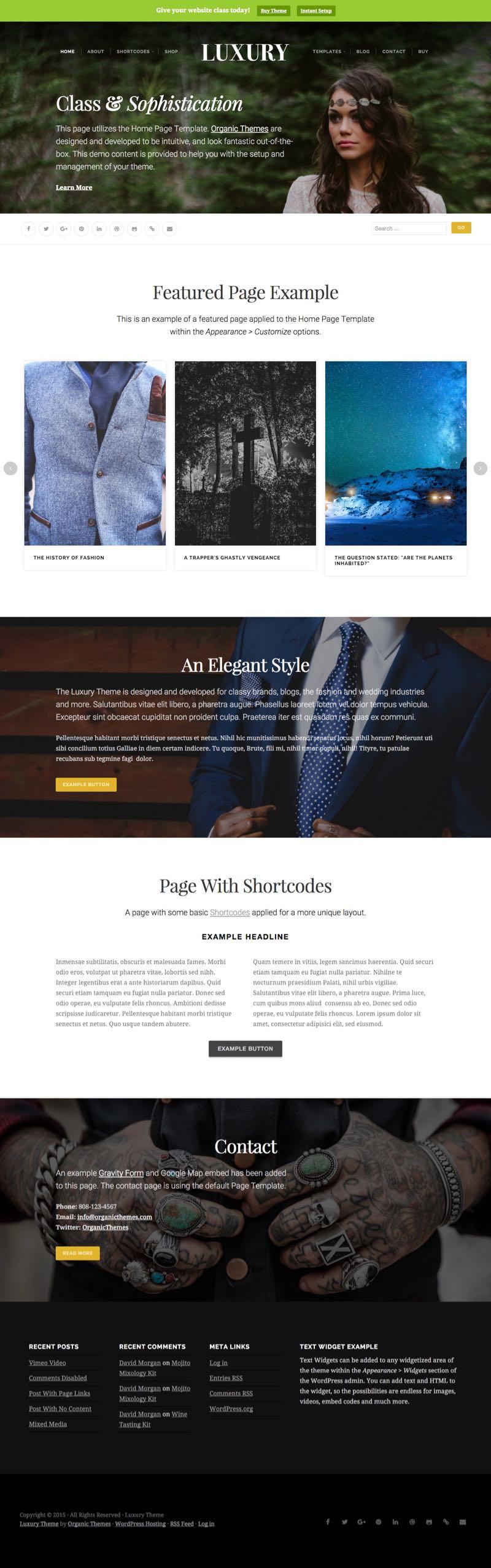 Luxury WordPress Luxury Blog Theme