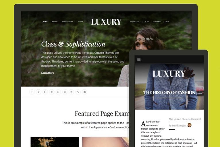Luxury WordPress Product Branding Blog Theme