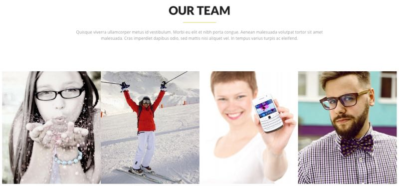 Sol Theme - Team Members Page