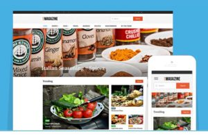 LiveMagazine WordPress Bold Online Journal Theme