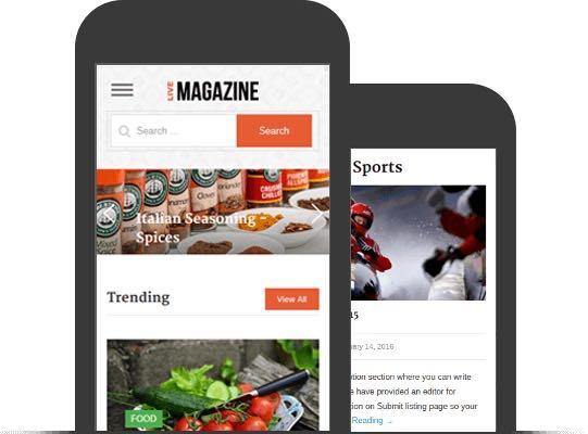 LiveMagazine WordPress Online Publication Theme
