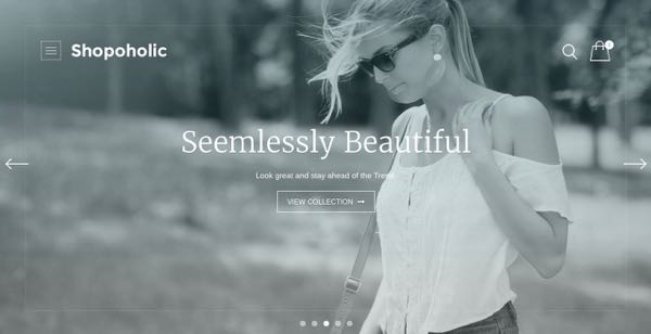 The Header Section of Shopoholic Theme