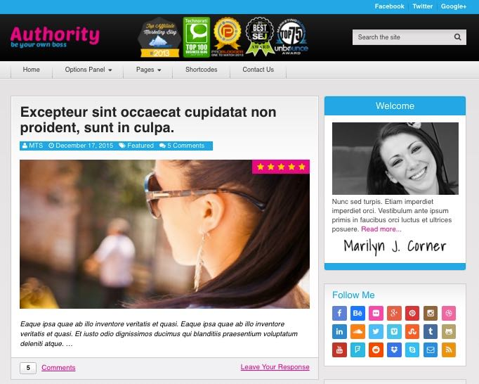 Authority WordPress Affiliate Markerters Theme