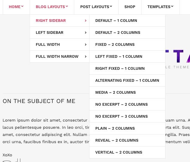 Lifestyle Blog Layout Options