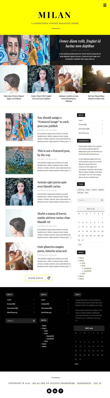 Milan Pro Magazine Stories WordPress Theme